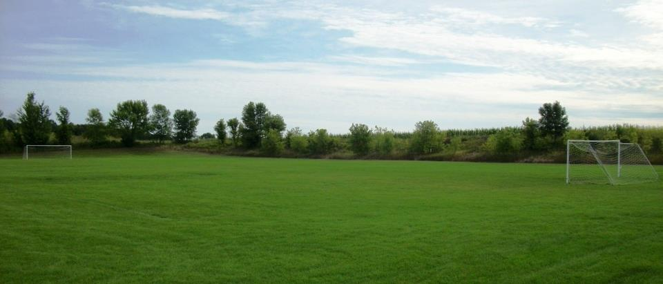 Soccer Field Wide